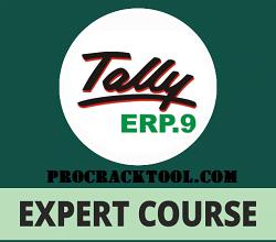 Tally ERP Crack Version